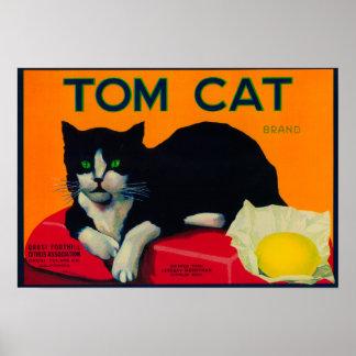 Limón LabelOrosi, CA del gato de Tom Póster