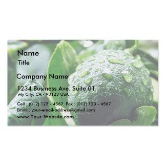 Limón verde de Meyer Tarjeta De Visita