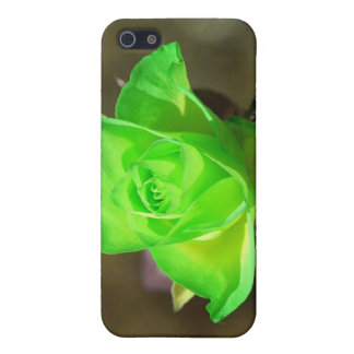 Limon Yellow Rose iPhone 4 Case