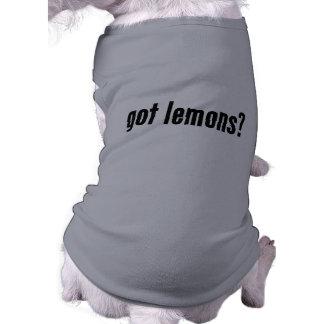¿limones conseguidos? playera sin mangas para perro