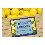 Limones de Aliso en un cajón Invitación 12,7 X 17,8 Cm