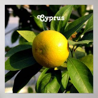 Limones de Chipre Póster
