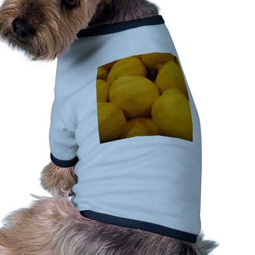 Limones Lemony Camisetas De Mascota