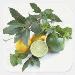 Limones para el uso en los E.E.U.U. solamente.) Pegatina Cuadrada