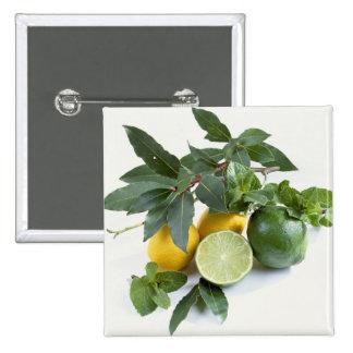 Limones para el uso en los E.E.U.U. solamente.) Pins