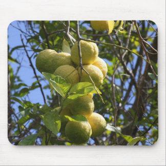 Limones Tapete De Raton