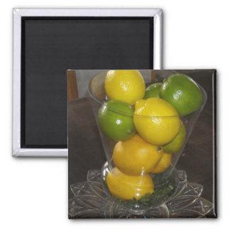 Limones y cales iman de frigorífico