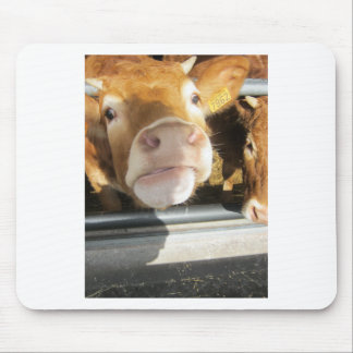 Limousin Brown Cow Mouse Pad