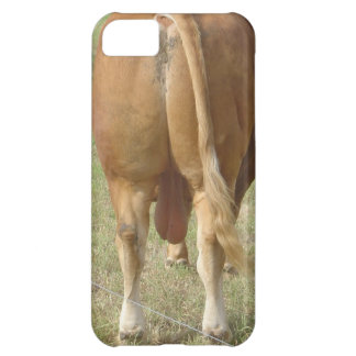 Limousin Bull Butt Case For iPhone 5C