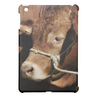 Limousin bull cover for the iPad mini
