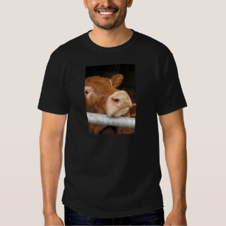 Limousin Cattle (Mad Cow) Shirt