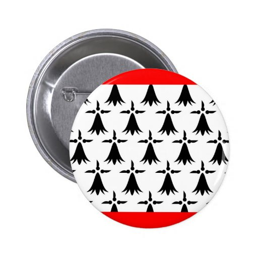Limousin flag french region france country pinback button