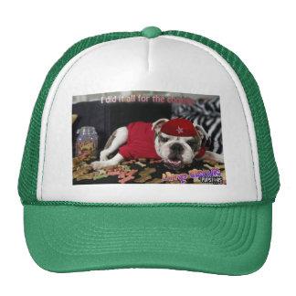 Limp Bisquit Hat