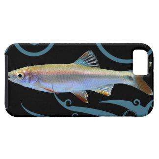 Limpiabotas tricolor con las ondas estilizadas iPhone 5 Case-Mate protectores