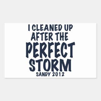 Limpié después de la tormenta perfecta, Sandy Pegatina Rectangular