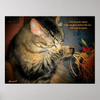 limpie el haiku del gato póster
