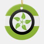 Limpie el poder verde ornamentos de reyes