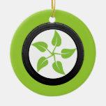 Limpie el poder verde ornato