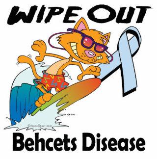 Limpie hacia fuera la enfermedad de Behcets Esculturas Fotograficas
