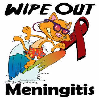 Limpie hacia fuera la meningitis esculturas fotograficas