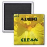 Limpie las flores sucias del iris amarillo del imá