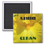 Limpie las flores sucias del iris amarillo del imá imán