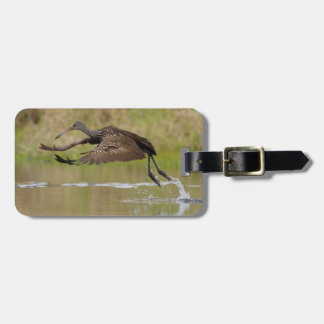 Limpkin Tag For Luggage