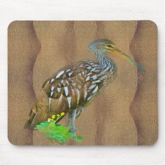 Limpkin, Swamp Bird Mousepad