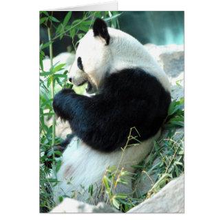 Lin Hui Card