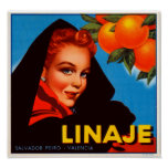 Linaje Citrus Poster