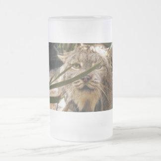 Lince canadiense 4201e taza de cristal