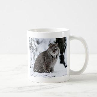 Lince canadiense en la nieve taza clásica