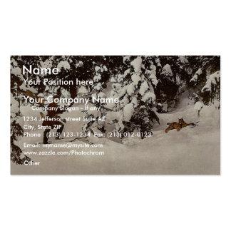 Lince de la interceptación, obra clásica tarjetas de visita