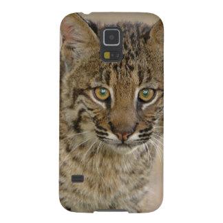 Lince, rufus del Felis, humedales de Funda Galaxy S5
