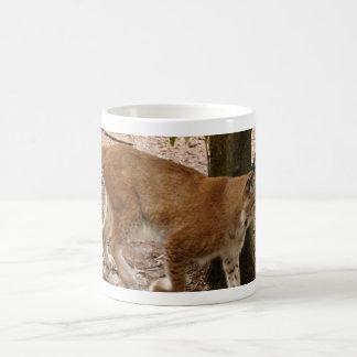 lince siberiano 031 taza de café