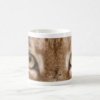 lince siberiano 032 tazas de café