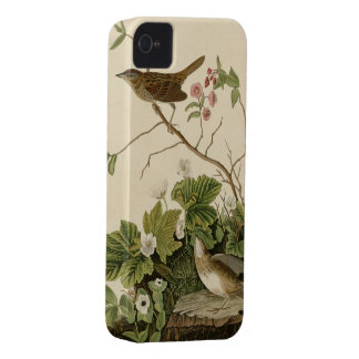 Lincoln Finch Case-Mate iPhone 4 Case