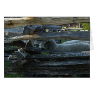 Lincoln Log Cabin Sheep Greeting Card