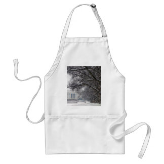 lincoln memorial winter snow adult apron