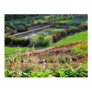 Lincoln, Nebraska Sunken Gardens #2011  2011N Postcard