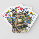Lincoln's Sparrow Bicycle Poker Deck