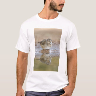 Lincoln's Sparrow reflected in ranch pond T-Shirt