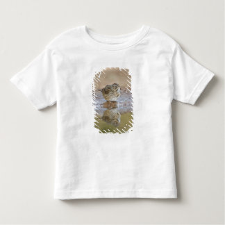 Lincoln's Sparrow reflected in ranch pond Toddler T-shirt