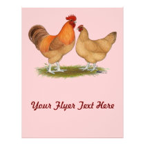 Lincolnshire Buff Chickens Flyer