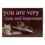 lindo e importante tarjetas