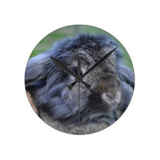 Lindo lop el conejo espigado reloj redondo mediano