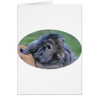 Lindo lop el conejo espigado tarjeta de felicitación