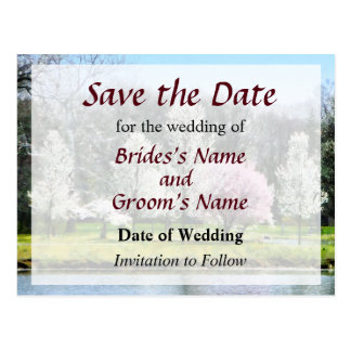Line of Flowering Trees Save the Date Post Card