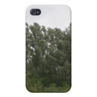 Line of Leaning Trees Landscape  iPhone 4/4S Cover