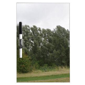 Line of Leaning Trees Landscape Memo Board